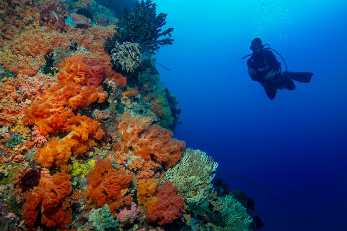 Batu-Pendeta-Bangka-Sulawesi
