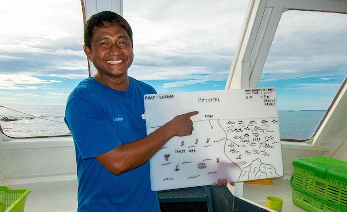 Dive Guide Internship