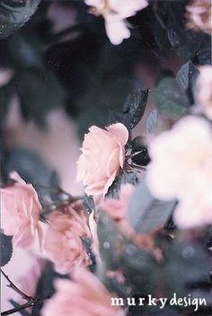 pink grey flowers inspiracja