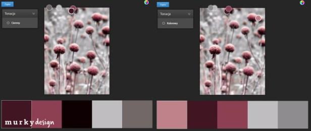 przyklad palety kolorystycznej