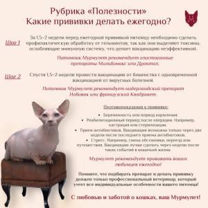 Какие прививки делать кошкам