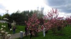 Gärten_der_Welt_6255
