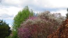 Gärten_der_Welt_6285