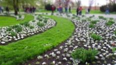 Gärten_der_Welt_6307