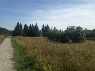 Botanischer_Garten_Pankow_6981