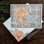 True Friendship: Stampin' Up! To a Wild Rose with Best Plaid