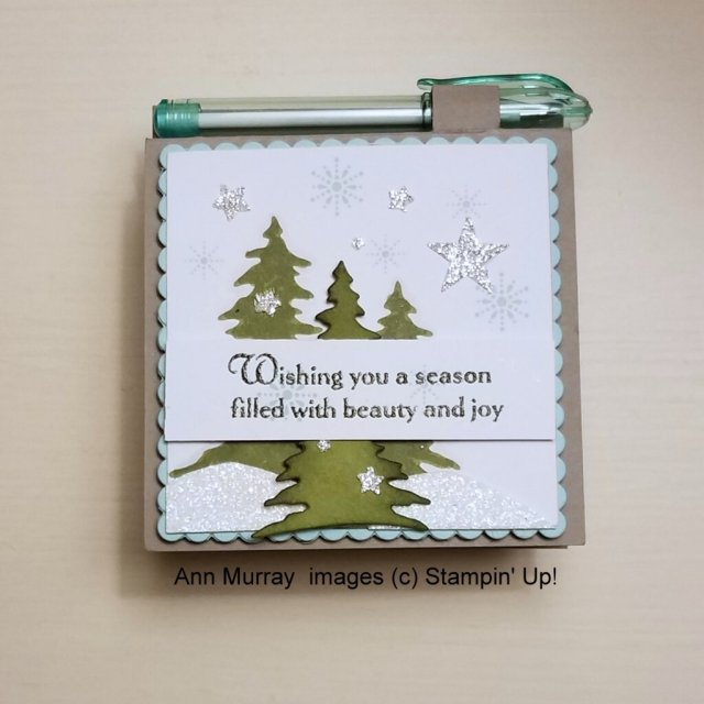 evergreen trees on winter background