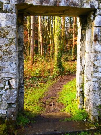 Gate from walled garden