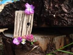 Miniature fairy doors