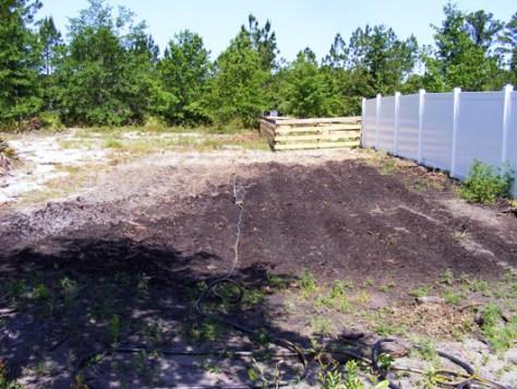 Rear corn plot May 12 2008