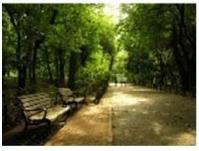 フラワーマンション林試の写真