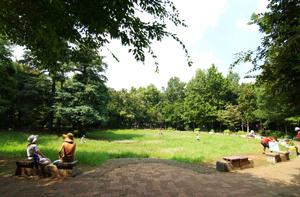 林試の森公園17 (2)