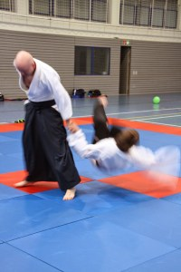 Training im Dojo