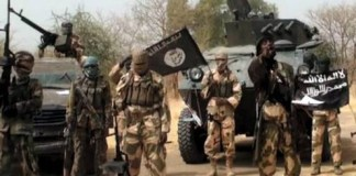 ?Boko Haram spy? arrested in Yobe after giving out information that led to attack of troops
