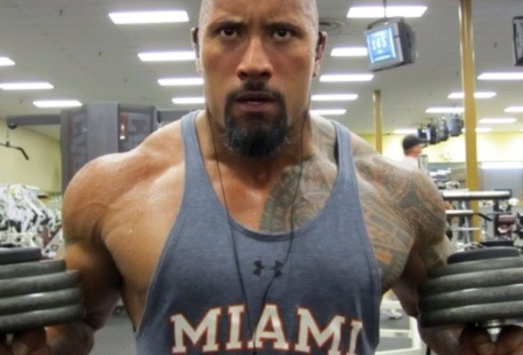 The rock dwayne johnsons workout routine and diet muscle and brawn the rock dwayne johnson sample muscle building diet malvernweather Choice Image