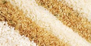 29 rice comparison