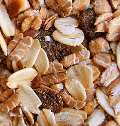 Low GL Breakfast Muesli Recipe