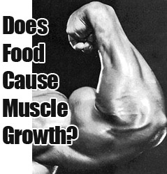 Bodybuilding & Food