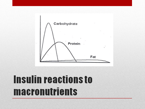 Insulin release from carbs, protein, and fat.