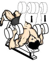 decline-dumbbell-bench-press