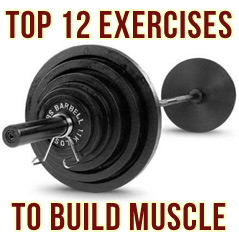 The Top 12 Best Exercises To Build Muscle