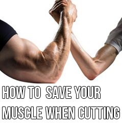 How To Not Lose Muscle When Cutting