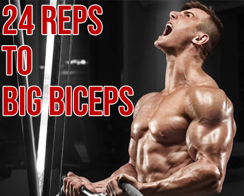 NEW 24-REP METHOD FOR BIG BICEPS
