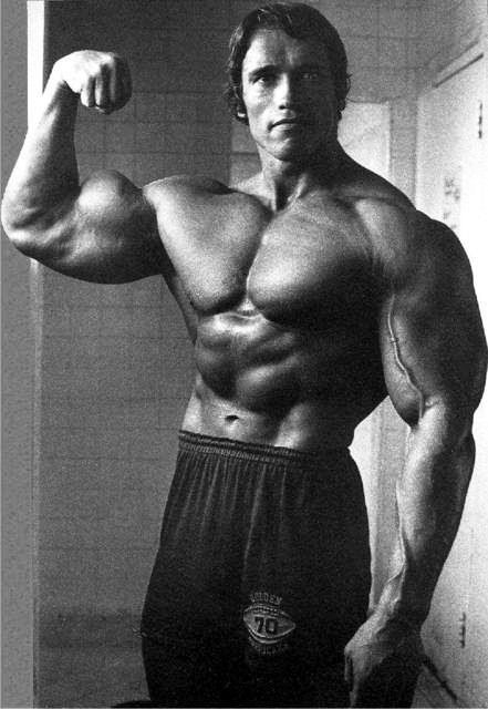 Arnold Schwarzenegger - training footage from 2013 and ...
