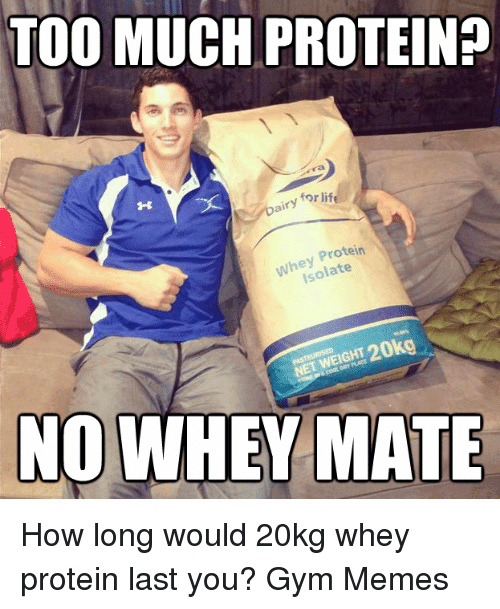 eating too much protein