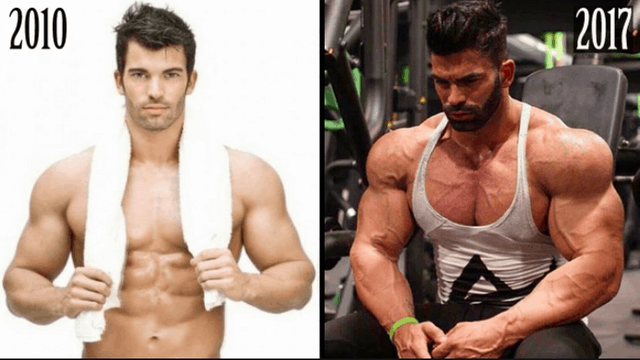 sergi constance supplements
