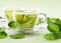 Green Tea Benefits – The Amazing Benefits of Drinking Green Tea