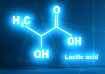 Lactic Acid – What Is Lactic Acid And Why Does It build Up in Muscles?