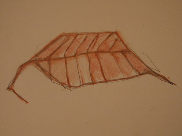 Blatt Zeichung Rötel