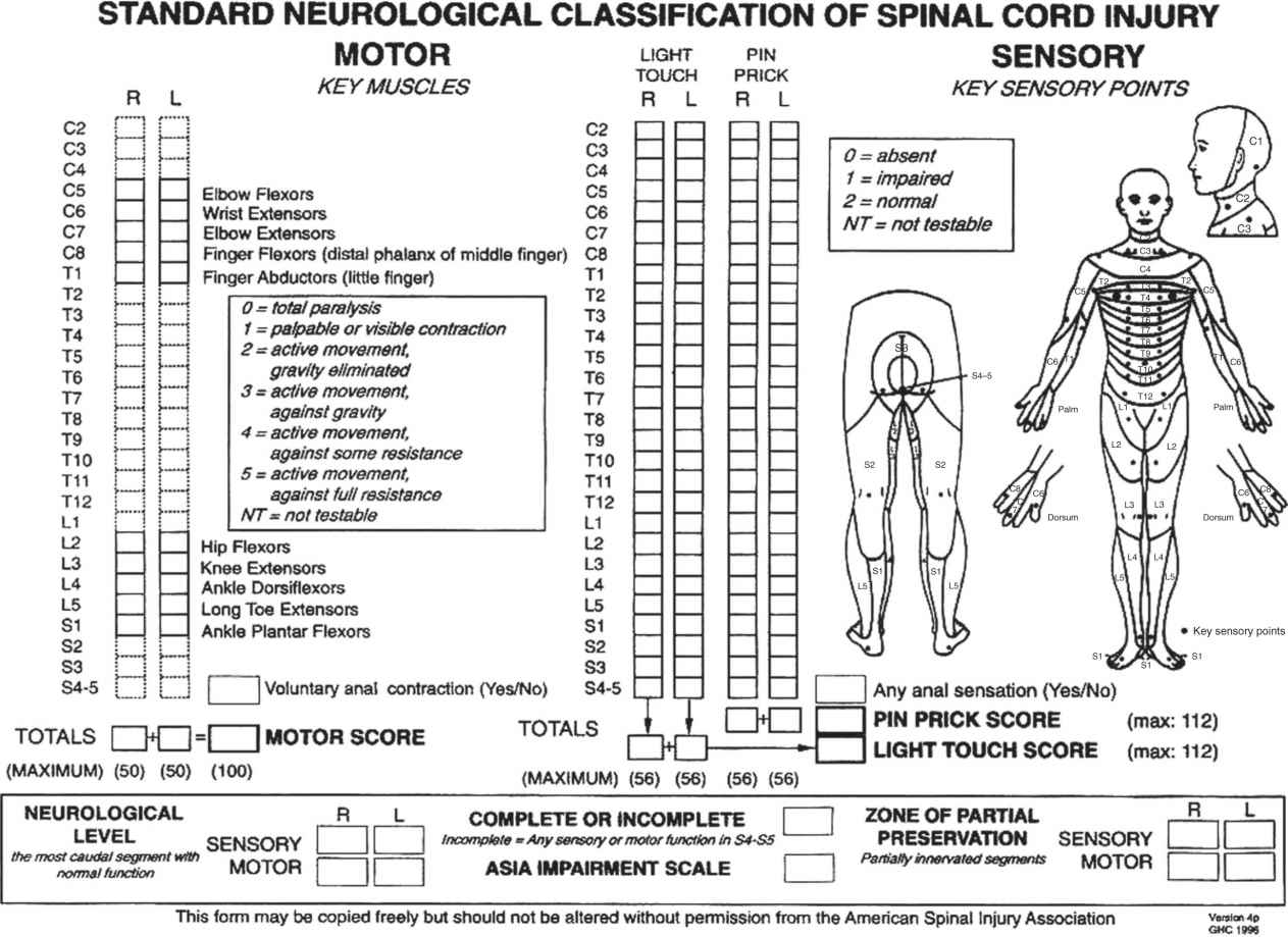 Spinal Cord And Related Injuries