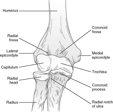 MEASUREMENT of RANGE of MOTION of the ELBOW and FOREARM ...