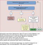 Medical Management of Rheumatic Heart Disease