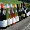 【終了】美食×日本ワインvol.2〜日本ワインでテリーヌ尽くしの特別メーカーズ・ディナー〜