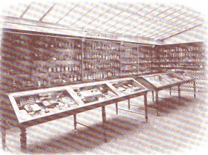 Le musée en 1920