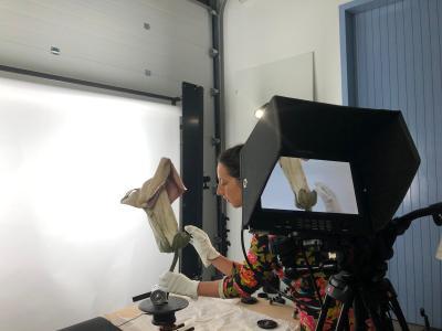 Les modèles botaniques de l'ENSAR dévoilent leurs mécanismes