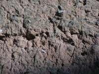 Mur en masse batiment exploitation 17e siecle