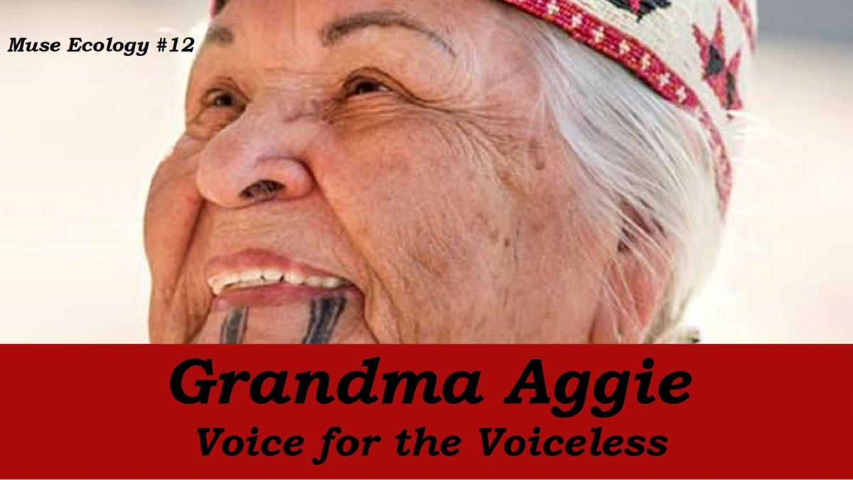 #12 Grandma Aggie, Voice for the Voiceless