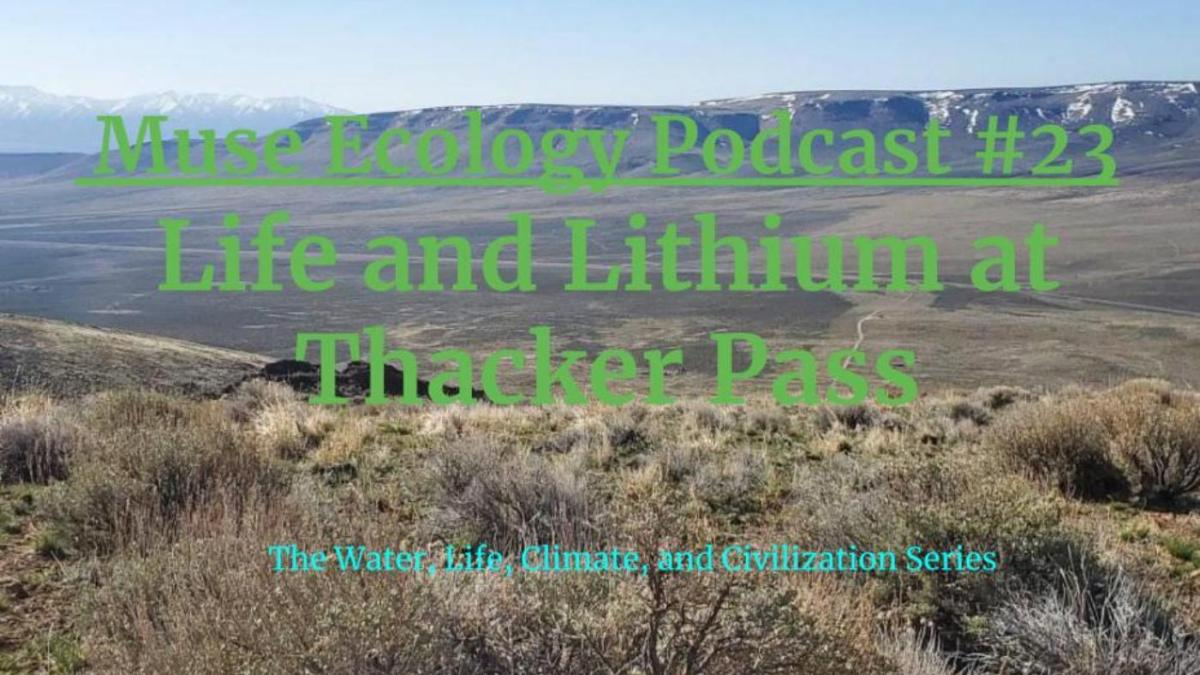 #23 Life and Lithium at Thacker Pass