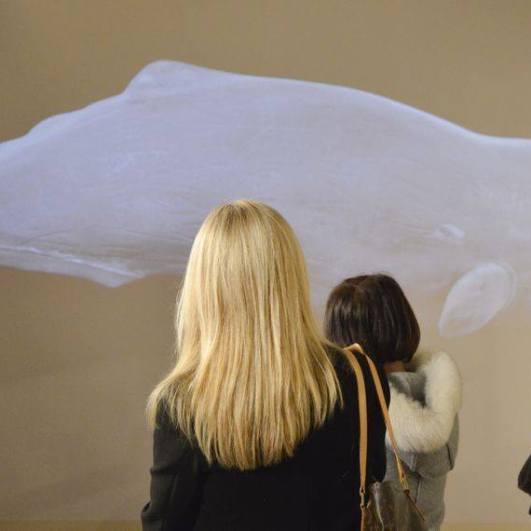 Balene, Museo della Grafica - Palazzo Lanfranchi, 18 dicembre 2015 - 20 marzo 2016