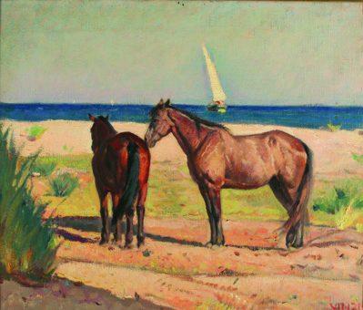 Cavalli al sole