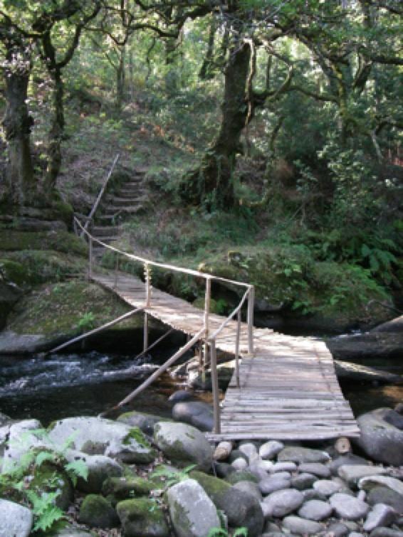 Ponte de San Roque (2)