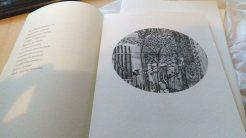 libro de poemas alfabeto de la noche 1