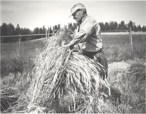 Kuva Mäntyharjun museo, kuvaaja: Helmi Virtaranta.