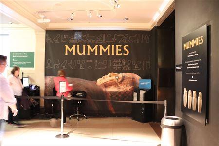 シカゴのフィールド・ミュージアムから借りてきたミイラを展示しているようです。閉まっていて見られませんでした