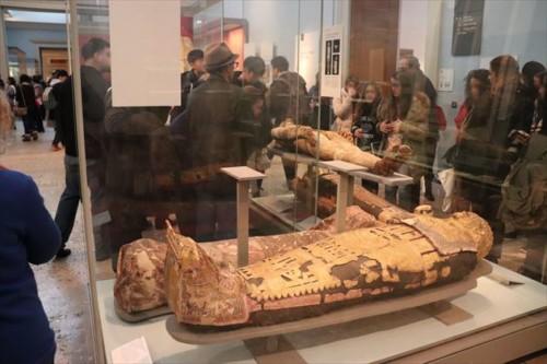 古代エジプトの展示