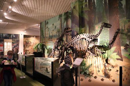恐竜の展示も充実していました